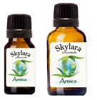Arnica Essential Oil Aromatherapy Supplies