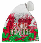 Dragon Baby Hats