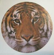 Springbok Round Puzzle