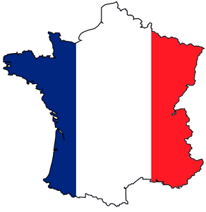 French Tutoring for beginners and intermediate (Including TEE) Rivervale Belmont Area Preview