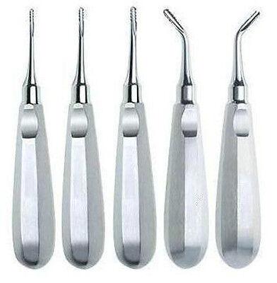 5 Serrated Elevators Dental Veterinary Instruments