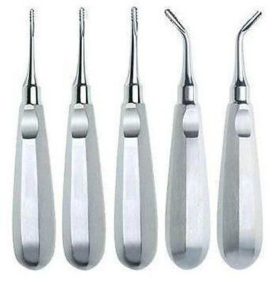 Luxating Root Elevators Straight Stainless Ce Dental - Lot Of 5
