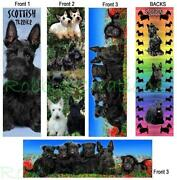 Scottish Terrier Book