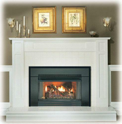 Natural Gas Fireplace Insert | eBay