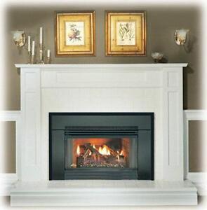 Fireplace Insert Ebay