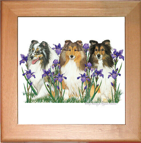 "Shetland Sheepdog Sheltie Dog Ceramic Trivet Framed in Pine 8"" x 8"""