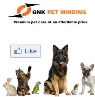 Pet minding