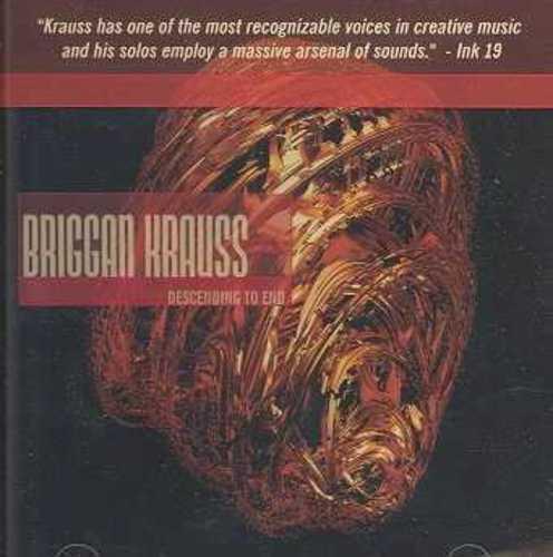 DESCENDING TO END - Briggan Krauss