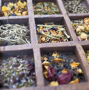 Traditional Chinese Medicine: Herbal / Diet / Physical Movement