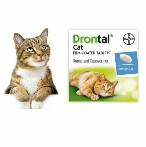 Dewormer for Cat Allworms Round and Tap Worm 4 Tabs EXP 04/2022