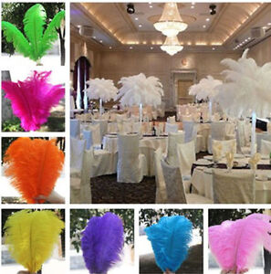 Stunning Wide & Fluffy Ostrich/Peacock Feather/Micro LED Fairy