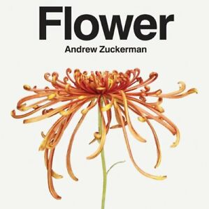 Flower - Photography by Andrew Zuckerman OUTSTANDING