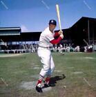 Stan Musial St. Louis Cardinals MLB Bats