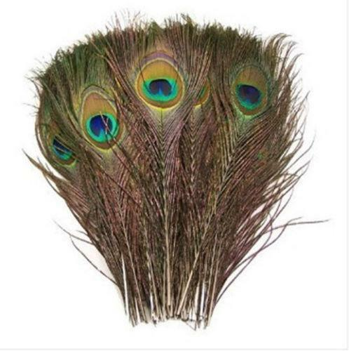 peacock feather wedding decorations ebay peacock feathers decoration in the living room trends