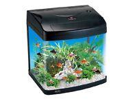 Aqualine Aquarium
