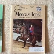 Morgan Horse Magazine