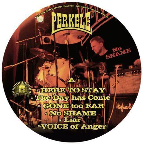 Punk Rock Vinyl Records Ebay