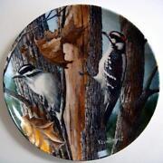 Kevin Daniel Plates