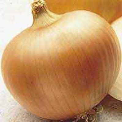 Onion Yellow Sweet Spanish Heirloom Vegetable 200 Seeds