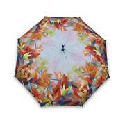 Tropical Umbrella