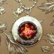 Bubble Locket