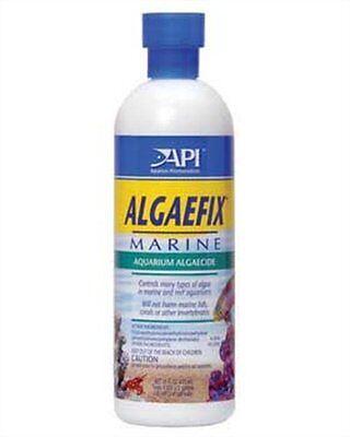 Algae Fix Marine (API Algaefix Marine, 16-Ounce , New, Free Shipping )
