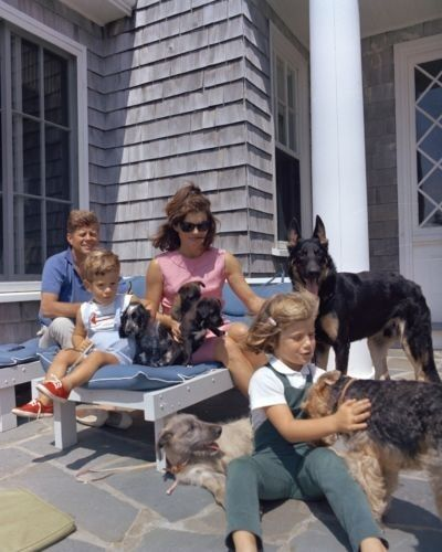President John F. Kennedy and family with dogs at Hyannis Port - New 8x10 Photo