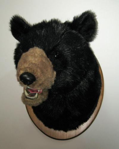 Mounted Bear Head Ebay