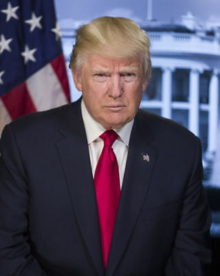 President Donald J Trump Official First Portrait 8 5X11 Photo