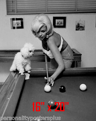 "Jayne Mansfield~Shooting Pool~Playing Pool~Billiards~16"" x 20""~Poster~ Photo"