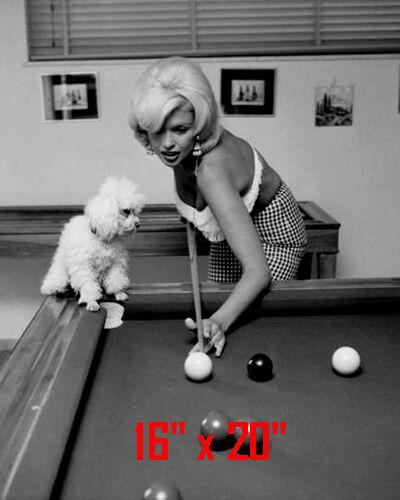 "Jayne Mansfield~Shooting Pool~Playing Pool~Billiards~16"" x 20""~Poster~ Photo"