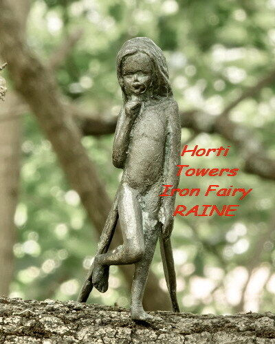 """RAINE - """"The Iron Fairies"""" (Fairy of The Gum Tree) in New Bag Packaging"""