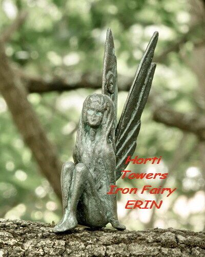 """ERIN """"The Iron Fairies"""" Fairy (New Bag Packaging) - Fairy of The Pond"""