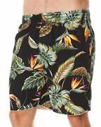 Stussy Shorts