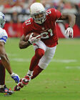 Patrick Peterson NFL Photos