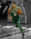 Jayson Tatum NBA Photos