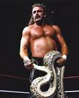 Jake Roberts Wrestling Photos