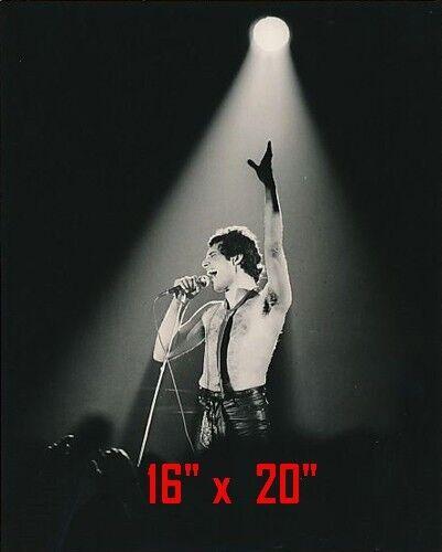 "Queen~Freddie Mercury~Poster~Photo~16"" x  20"""