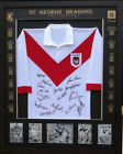 Jersey St George Illawarra Dragons Signed NRL & Rugby League Memorabilia
