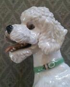 Rosenthal Dog