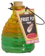 Glass Fly Trap
