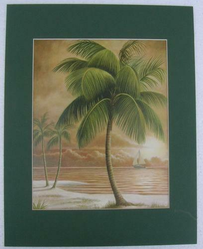 Palm Tree Pictures: Home Decor