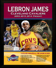 LeBron James 8 Size NBA Plaques