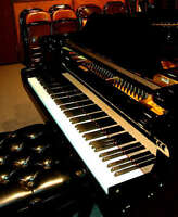 Piano, vocal. theory lessons:great quality for right price!