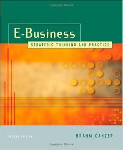 e-Business Strategic Thinking and Practice (Second Edition) West Island Greater Montréal image 1