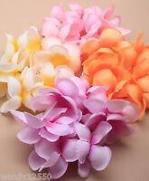 Paquete De 6 Tonal Elástico Flor Tela Coleteros, Accesorio Pelo : Sp-5665 Pk6 -  - ebay.es