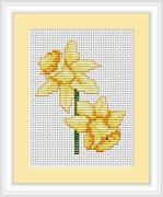 Beginners Cross Stitch Kit