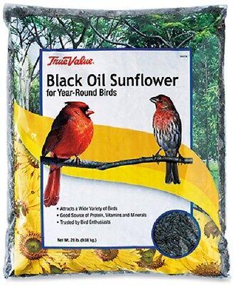 JRK / True Value 20 lb B115920 20 lb Black Oil Sunflower Wild Bird Food / Seed