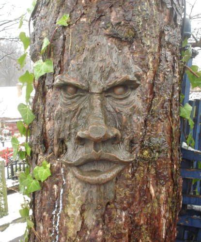 Realistic tree face wooden carved mystical garden
