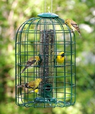 AUDUBON SQUIRREL-RESISTANT CAGED TUBE BIRD FEEDER by WOODLINK